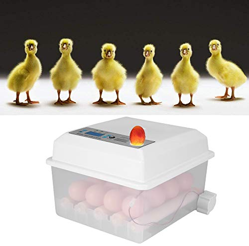 KKTECT Incubadora de Huevos de 16 Huevos Máquina nacedora Huevo Giratorio automático de Temperatura Ajustable para Huevos de gallina, Huevos de Pato, Huevos de Paloma, Huevos de Ganso