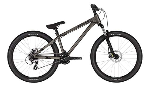 Kellys Whip 10 26R Dirt Mountain Bike 2021 (L/34cm, Raw)
