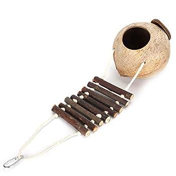 WENHANGshidai Nichoir d'intérieur en coquille de noix de coco naturelle pour hamster, perroquet ou animal domestique