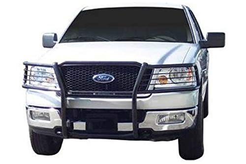 05 f150 grille guard - 9