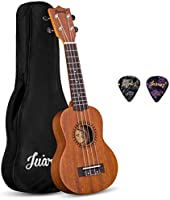 Juarez Musical Instruments Starting INR 139