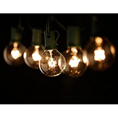 Patio Lights String - G40 Bulbs - Incandescent Market Lighting Set - Clear Globe Outdoor String Lights - Wedding Cafe Bistro Commercial Garden Porch Pool Lighting - 25 Bulbs - 25ft Length - Black Wire