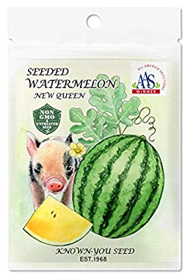Non-GMO, Untreated Seeds, F1 Hybrid Seeded Watermelon Seeds, Variety: New Queen