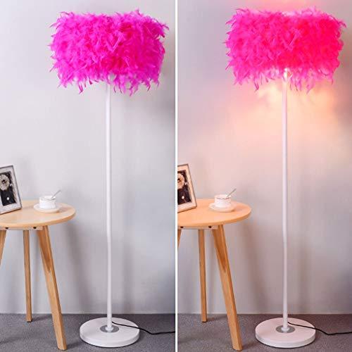 LY88 Licht Europese Stijl Eenvoudige Mode Veer Crystal Vloerlamp Kleur : Rose Rood, Maat : -
