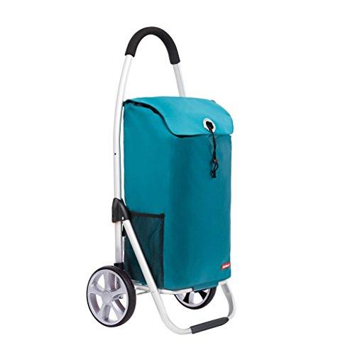 KEWEI Blumenständer, 50 l, Leichter Einkaufstrolley, Aluminiumlegierung, zusammenklappbar, klein, für einfache Aufbewahrung (Farbe: Seeblau), Farbe: grasgrün seeblau