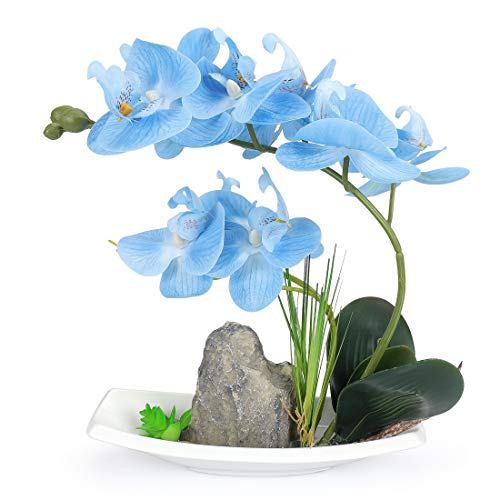 Yobansa Dekorative echte Berührung gefälschte Orchidee Bonsai künstliche Blumen mit Imitation Porzellan Blumentöpfe Phalaenopsis Blumenarrangements für Home Decoration (Blue 02)