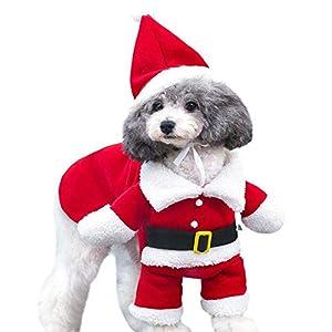 Lomire Costume du Père Noël pour Chiens, Vêtement/Manteau d'hiver en Peluche Tient Chaud pour Chiens de Petites Tailles, vêtement Noël avec Chapeau Adorable pour Teddy, Yorkshire, Chihuahua