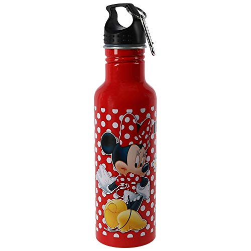 1 X Disney's Minnie Mouse - All About Me - Aluminum Water Bottle
