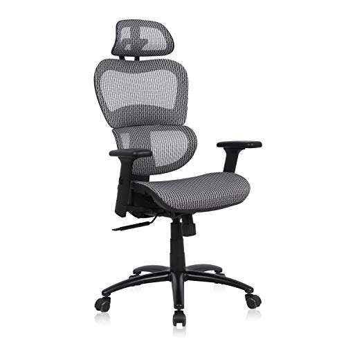 Komene Ergonomic Office Chair, High Back Desk Chairs with Adjustable Headrest backrest, 3D Flip-up Arms, Swivel Executive Chairs for Home and Conference Room (Grey)