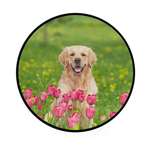 TropicalLife XIXIKO Golden Retriever Dog Tulipán Flower Alfombra Redonda Área Alfombra Circular Antideslizante Alfombra de Piso Sala de Juegos Niños Sala de Juegos Dormitorio Cojín de 36'