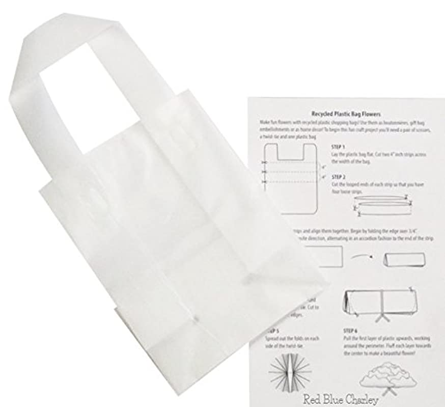 Plastic Shopping Bags | 24 Pack | Clear Frosted Gift Bag with Handle for Retail (Rose - 5x3x7)