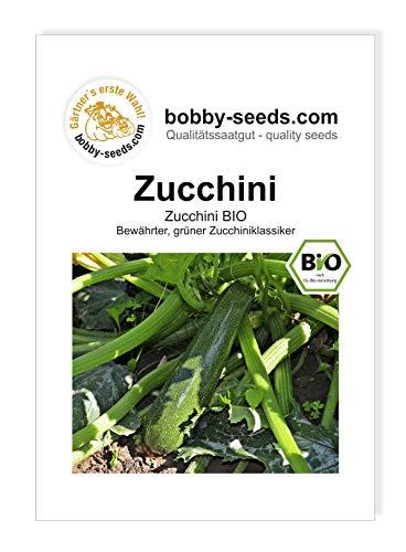 Bobby-Seeds BIO-Kürbissamen Zucchini BIO Portion