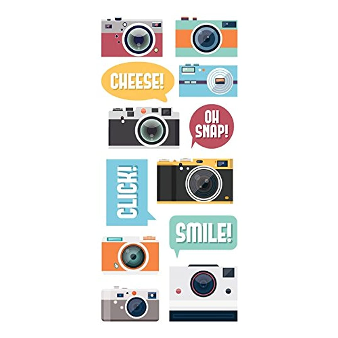 Paper House Productions STP-0045E Cameras Stickers, Puffy (3-Pack)