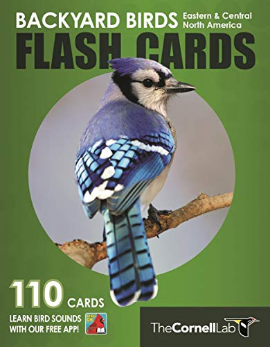 Backyard Birds Flash Cards - Eastern & Central North America (Cornell Lab of Ornithology)