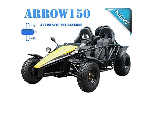 TAO TAO Arrow 150cc Gokart with Reverse