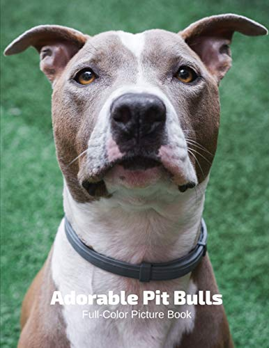Adorable Pit Bulls Full-Color Picture Book: Dog Picture Book -Pets Different Breeds