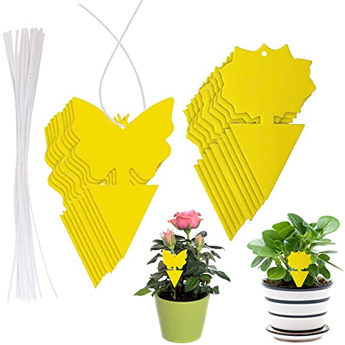 20 Pcs Dual-Sided Yellow Sticky Fly Traps, Fruit Fly and Gnat Trap with...