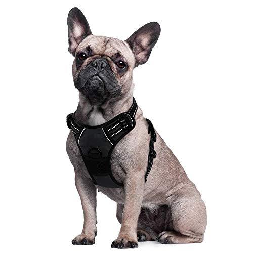 Eagloo Arnes de Perro Antitirones Cómodo Chaleco Ajustable Correa al Cuello y Pecho para Perros Pequeños Material Duradero Transpirable con Cinta Reflectante Adaptarse a Ejercer Externo S/Negro