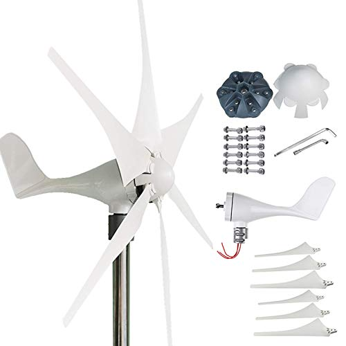 FSFF Generador de turbinas eólicas 6000W, 6 aspas Molino de Viento casero sin Brida Asiento más fácil de Instalar, 24v