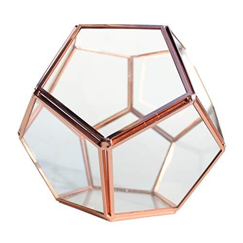 SM SunniMix Glas Terrarium Schmuckkästchen Ring Box Kugel Form Ehering Schmuck Box Blumenhalter/Pflanzenhalter, Perfekt zum Hochzeit/Geburtstag Deko