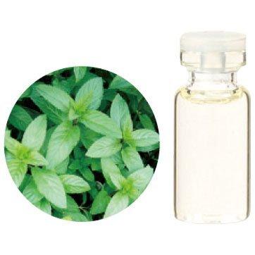 Aroma Japan Import Tree of Life Herbal Life Essential Oil 3ml - Pepper Mint (Harajuku Culture Pack)