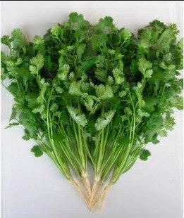 20 graines / paquet graines de vanille semences de légumes plantes bonsaï balcon