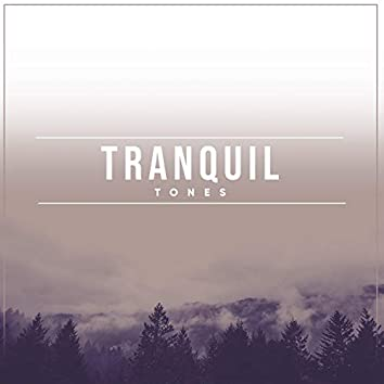 """"""" Tranquil Bedtime Tones """""""