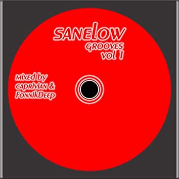 Sanelow Grooves, Vol. One