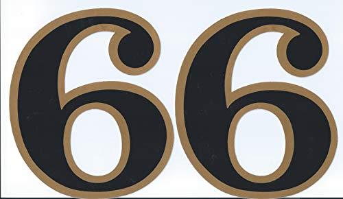 (シャシャン)XIAXIN 防水 PVC製 ナンバー ステッカー 耐候 耐水数字 ゼッケン キャラクター 表札 スーツケース 背番号 ネームプレート ロッカー 屋内外 兼用 TS-138BG (2点, 6)