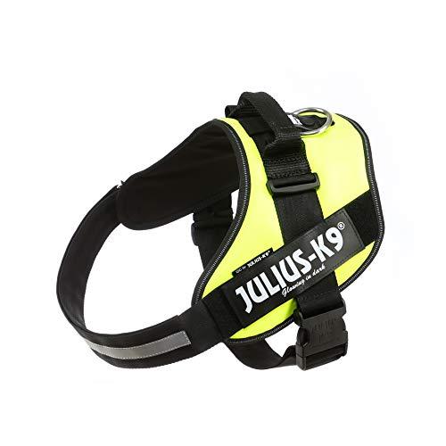 Julius-K9, 16IDC-FNE-3, IDC-Powergeschirr, Hundegeschirr, Größe: 2XL/3, UV neon grün