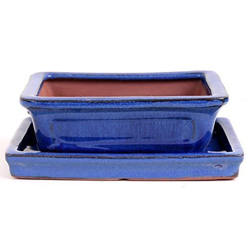 Bonsaï – Coque avec soucoupe rectangulaire Bleu 16,5 x 13 x 5,5 cm, 23113