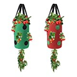 Miewslan 2 Packs Upside Down Planter, Hanging Strawberry Tomato Potato Grow Bag Garden Plant Vegetable Planting Bag with Holes(Green+Red)