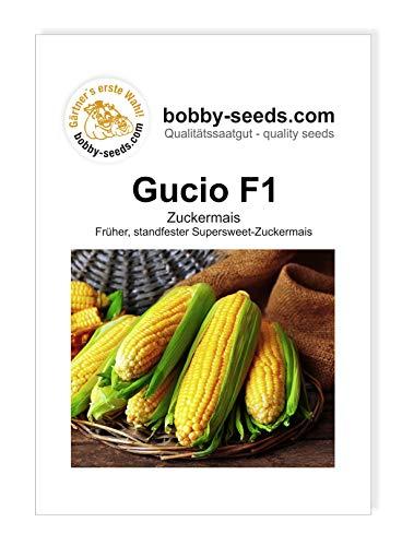 Bobby-Seeds Mais Samen Gucio F1 Zuckermais Portion