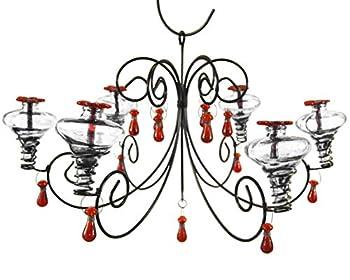 Best parasol hummingbird Reviews