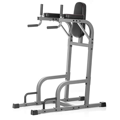 XMark Commercial Vertical Knee Raise with Dip Station