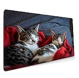 Mauspad Für Fotos,Gaming Mauspad,Schreibtischunterlage 900x400 mm XXL Mousepad Mauspad Selbst Gestalten Personalisierte Geschenke Für Meinen Freund