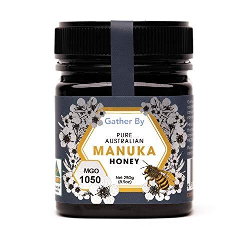 Manuka Honig MGO 1000+ / 1050 Platin/UMF 22+ aus Australien (250g)