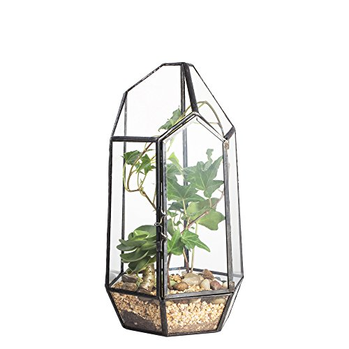 866quot Height Closed Irregular Glass Terrarium with Door Succulent Planter Geometric Flower Plant Pot Tabletop Small Bonsai Reptile Container Desktop Display Box Candle Holder Gift No Plants Included
