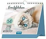 Trötsch Sprüche und Zitate zum Aufstellen Katzen: immerwährender Tischaufsteller mit Spiralbindung