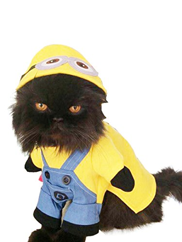 Super Cute Dogs Cats Dress Up – Disfraz Funny de Minions
