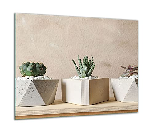 TMK | Placa de cristal para cubrir la cocina de 60 x 52 cm, una sola pieza, protección contra salpicaduras, para cocina eléctrica de inducción