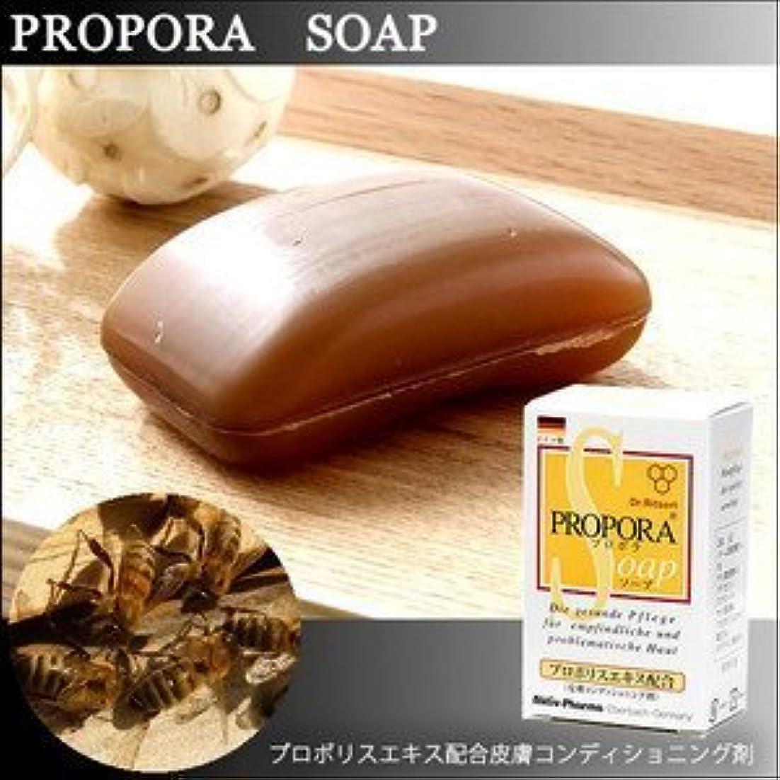 周辺スポンジ場所お肌にお悩みの方に 天然由来成分のみを使用したドイツ生まれのプロポラソープ