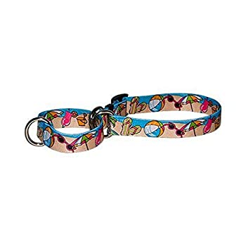 Beach Party Martingale Control Dog Collar - Size Extra Small 10  Long - Made In The USA
