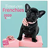 ERIK Studio Pets French Bulldog Wandkalender/Broschürenkalender 2020 30x30cm (aufgeklappt 30x60cm im Hochformat)