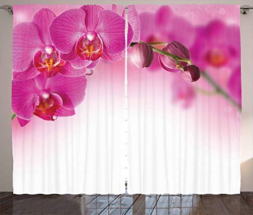 ABAKUHAUS Orchidee Rustikaler Gardine, Exotische Orchid Feng Shui, Schlafzimmer Kräuselband Vorhang mit Schlaufen...