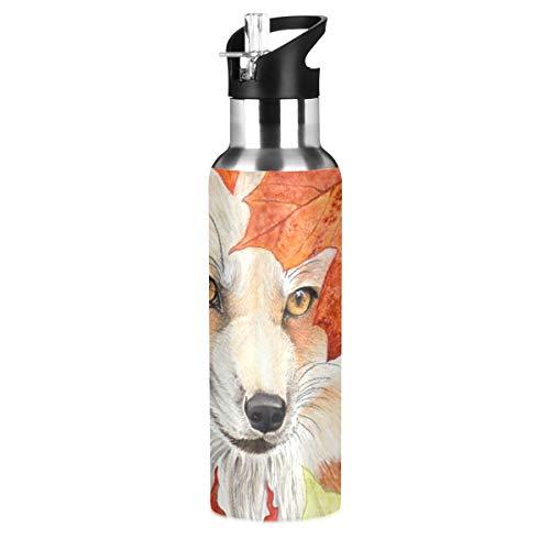 RURUTONG Botella de agua Fox de acero inoxidable aislada, 2010214, mantiene líquidos calientes o fríos con boca ancha y pajita para fitness, gimnasio, camping, deportes al aire libre, animales 2010214