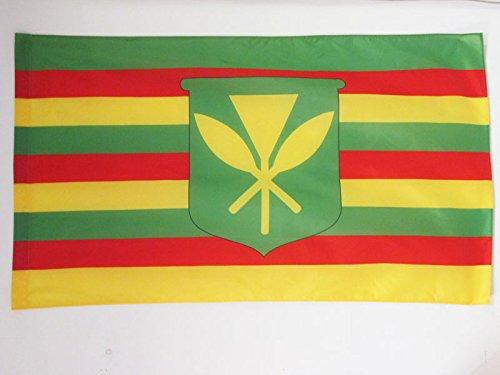 AZ FLAG Bandera de Hawaii Kanaka MAOLI 90x60cm para Palo - Bandera Hawaianos NATIVOS 60 x 90 cm