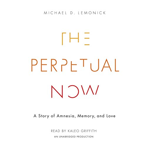 The Perpetual Now audiobook cover art