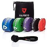 VIA FORTIS Premium Resistance Bands +...