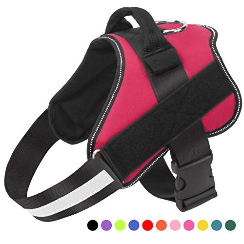 Bolux Dog Harness